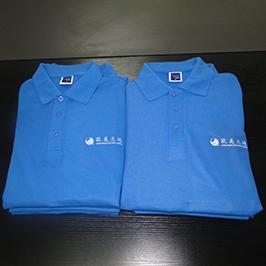 Polo gömlek özelleştirilmiş baskı örnek A3 t-shirt yazıcı WER-E2000T